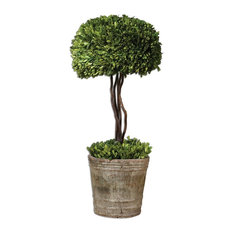 Tree Topiary Preserved Boxwood By Designer Constance Lael-Linyard