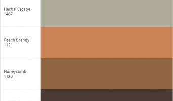 My Benjamin Moore® Color Palette