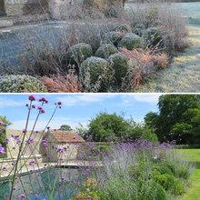 Seasonal Interest - Charlotte Rowe Garden Design