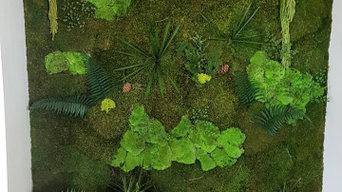 Mur végétal dans une niche pour le salon d'un particulier