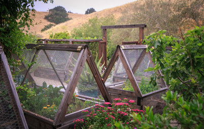 6 Ways to Keep Your Edible Garden Going Until Spring