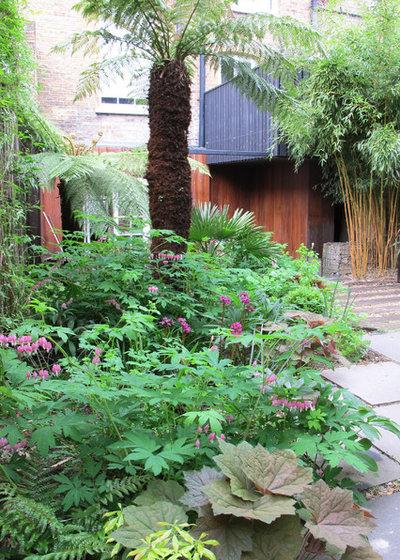 Tropical  by Fenton Roberts Garden Design