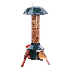 Audubon 75160 6 Lb Capacity Vista Squirrel Proof Bird Feeder
