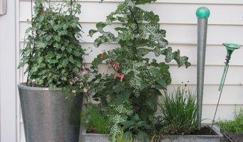 Summer planters