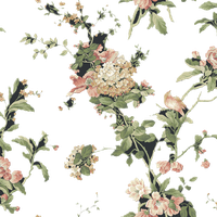 York Wallcoverings AK7500 Flower Vine Bloom Wallpaper