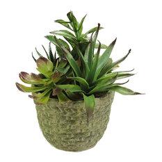 "8.5"" Artificial Mixed Succulent Plant Arrangement in a and Basket Weave Pot"