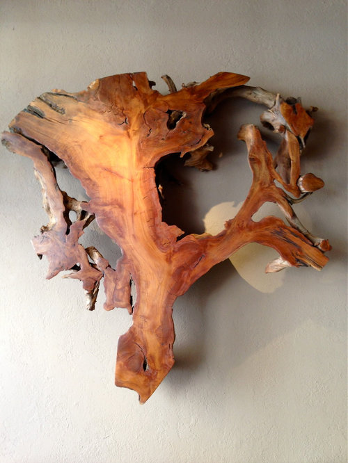 Tree Root Wall Art
