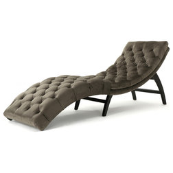 Transitional Indoor Chaise Lounge Chairs by GDFStudio