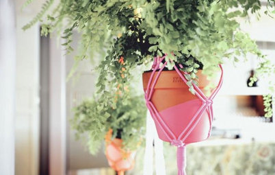 Well-Hung Greenery: 14 Ways to Take Your Plants Off the Ground