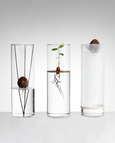 by Ana Domínguez Siemens