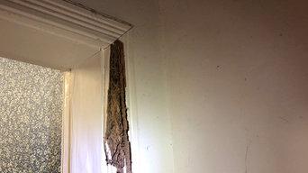Termite Management