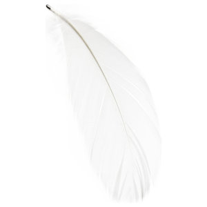 Magic Feather Magnet, White
