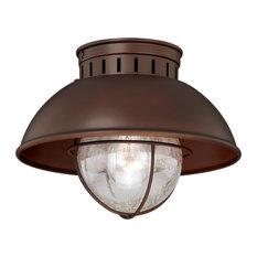 Harwich Bronze Coastal Barn Dome Outdoor Flush Mount Ceiling Light Clear Glass