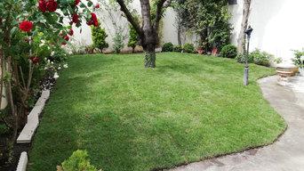 Un jardin mis à neuf