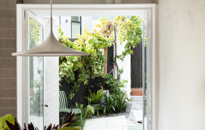 Before & After: An Awkward, Skinny Terrace Is Artfully Resolved