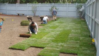 Landscaping - sod installation
