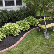 Tier One Lawn Care Inc's photo