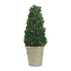 Tower Desktop Boxwood Topiary Planter