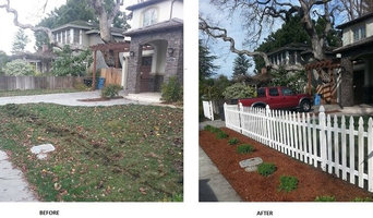Palo Alto Front Yard Renovation