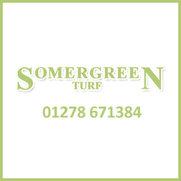 Somergreen Turf  and  Somergreen Maintenance's photo