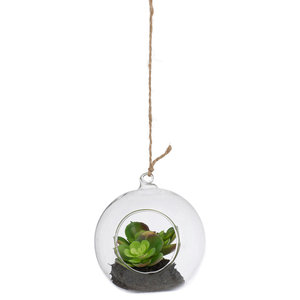 Large Hanging Glass Ball with Artificial Succulent Plant