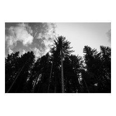 """The Air I Breathe"" Photo Print, Aluminium, 60x40 cm"