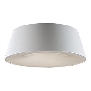 Schuller Zone Ceiling Light