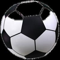 2.5' Giant Inflatable Soccer Ball, Made From Premium Raft Grade Vinyl