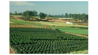 Best 15 Garden And Landscape Supplies In Greenville Sc Houzz