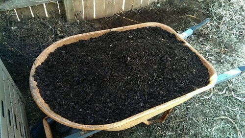 wheelbarrow full of homemade compost