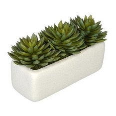 Artificial Green Pointed Echeveria Garden in White Sandy-Texture Rectangle
