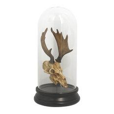 Resin Deer Skull With Glass Globe, Hueva