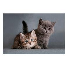 Tiny Kittens Gallery Door Mat, Small