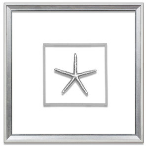 Small Starfish Suspended Between Glass With A Decorative French Line, Silver