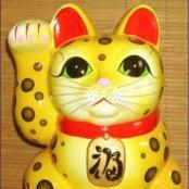 Yellow Cat's photo
