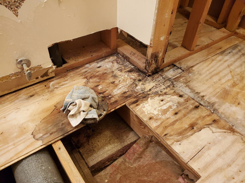Subfloor Replacement Under Wall Do I