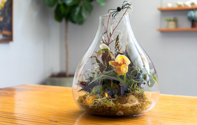 Houzz DIY: Halloween Terrarium