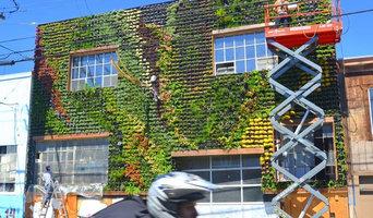 1,200 sqft Living Wall