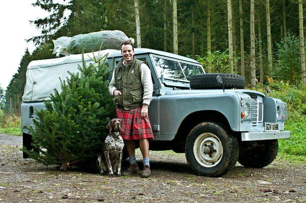 Классический Новогодние елки by Pines and Needles
