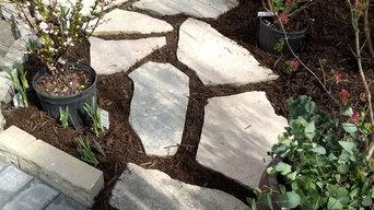 Stepper Pads Limestone
