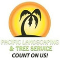 Pacific Landscaping & Tree Services's profile photo