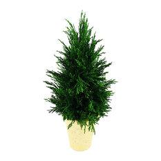 "Emerald Cypress Cone Topiary 16"""
