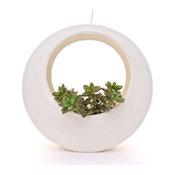 The Circle Pot, White