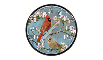 James Hautman Cardinals In Dogwood Thermometer