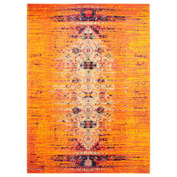 Contemporary Area Rugs by Area Rugs World