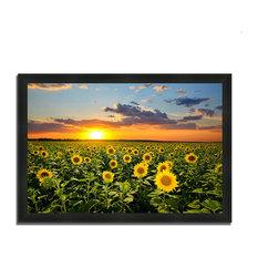 """Sunflower Sunset"", Framed Photograph Print, Ready To Hang"