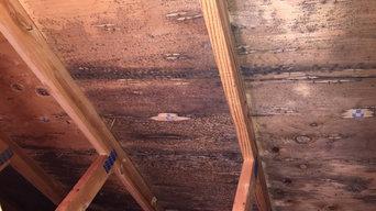 Mold Remediation Rochester NY