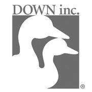 DOWN inc.'s photo