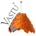 Vastu's profile photo
