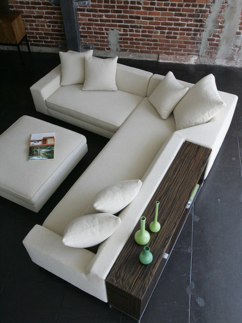 Tv room sofa houzz for Tv room sofa